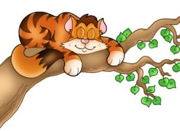 Sleeping cat on tree branch - color illustration.